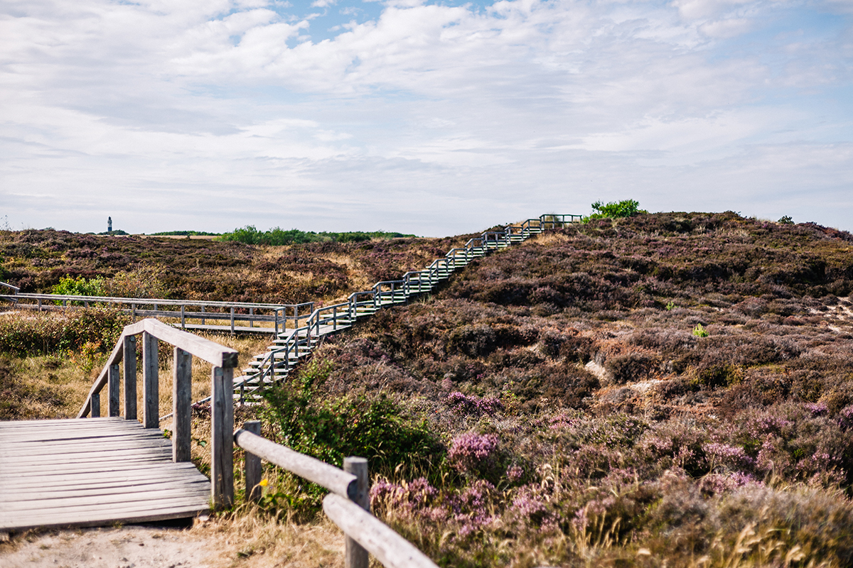 Braderuper Heide Panoramablick