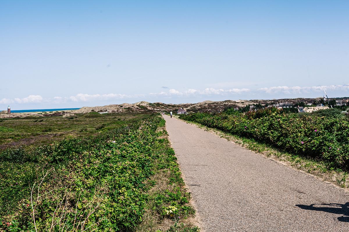 Ich gebe dir 10 gute Gründe, warum sich eine Fahrradtour auf Sylt so lohnt und tolle Impressionen meiner letzten Ausflüge auf dem Drahtesel.