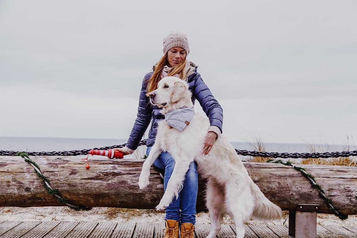 Sylt mit Hund: Die besten Tipps von Sylter Schnauze Sam