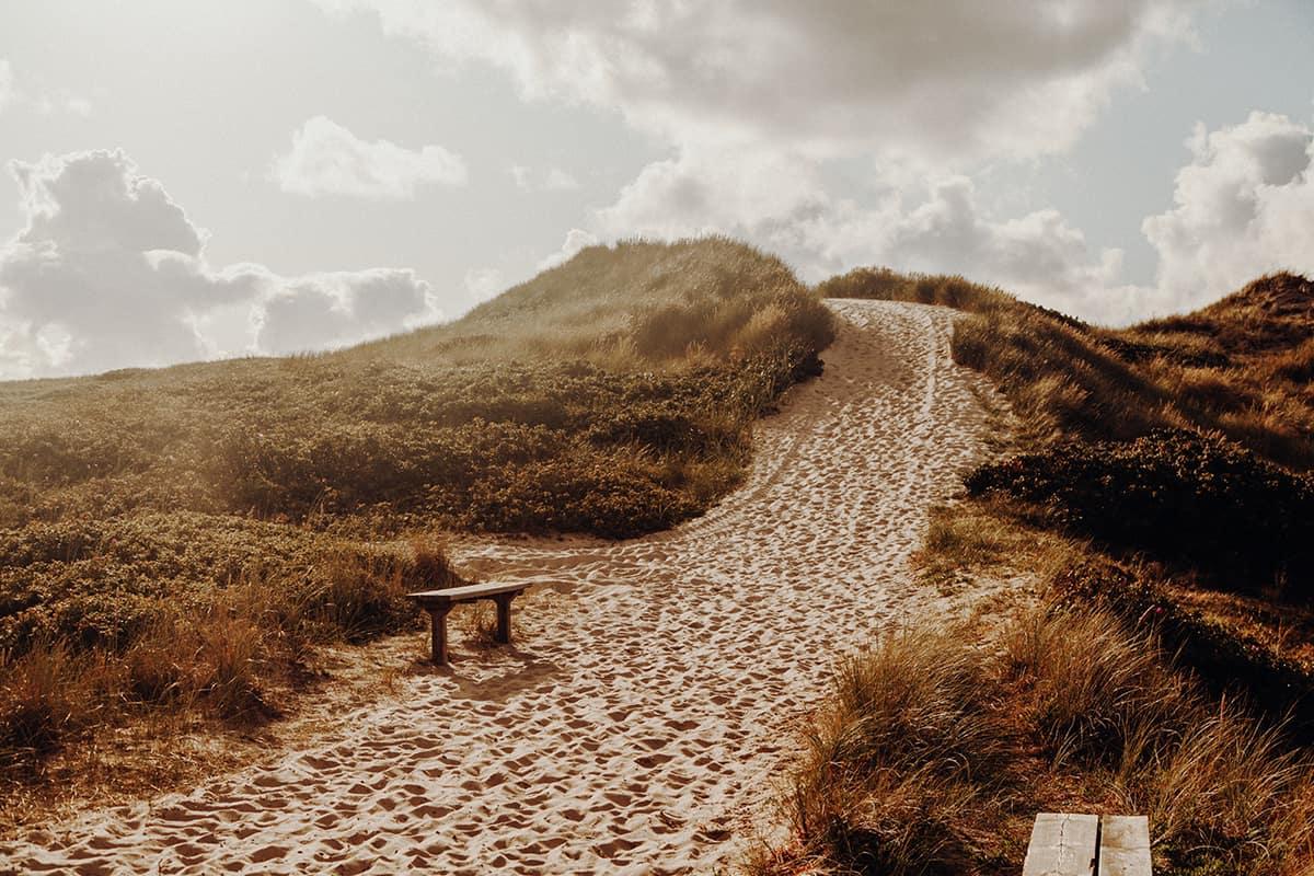 Weg zum Strand Dünen Kampen Sylt