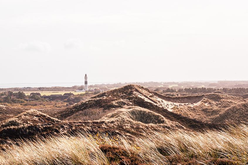 Aussichtspunkt Sylt Uwe Düne