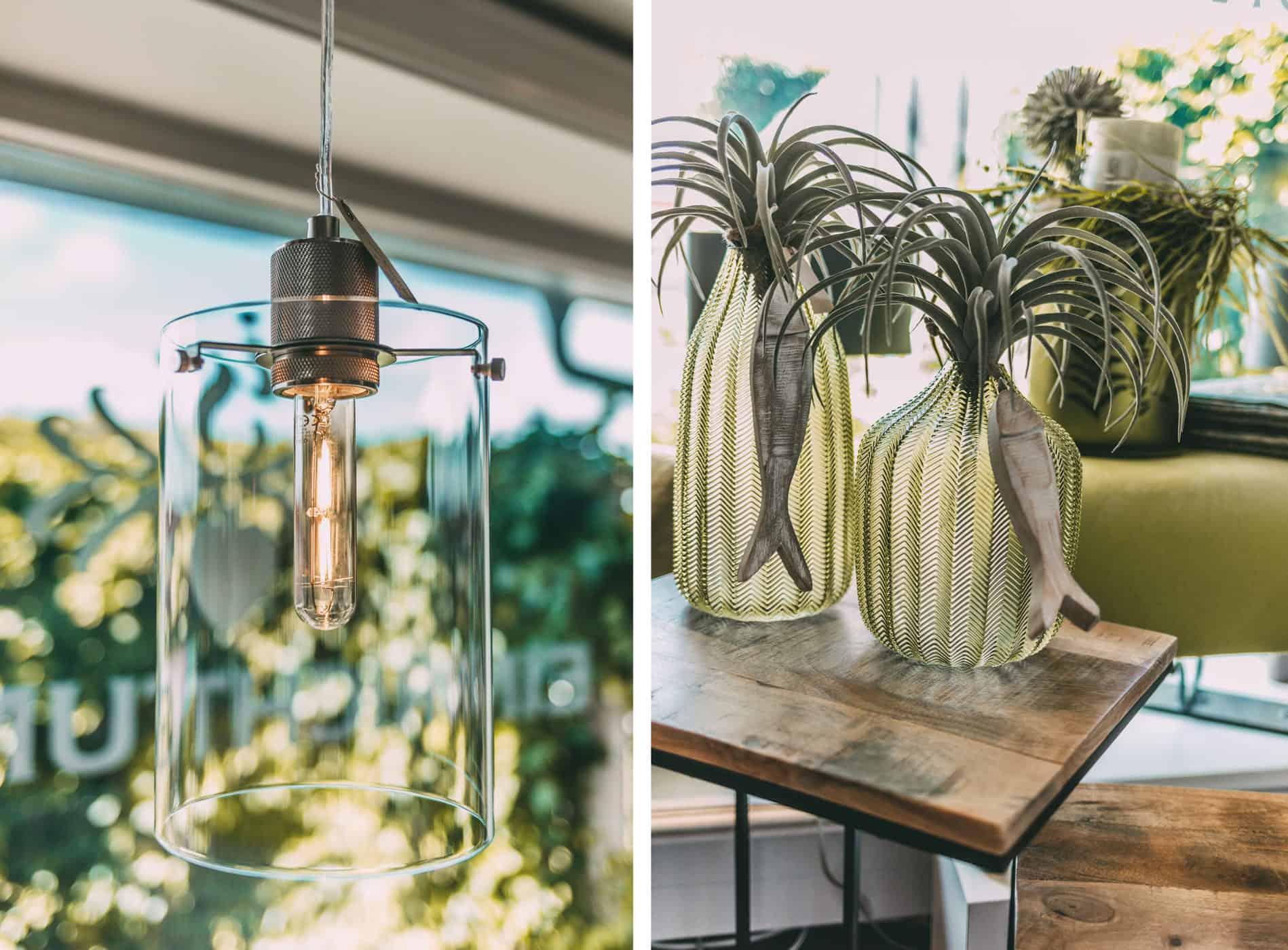 Leuchte und Pflanzen